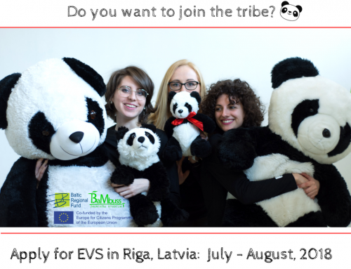 Apply for summer voluntary work in Riga!